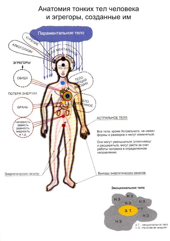 Тонкие энергии в теле человека